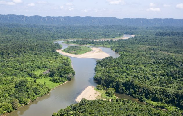 Sukau Rainforest Borneo